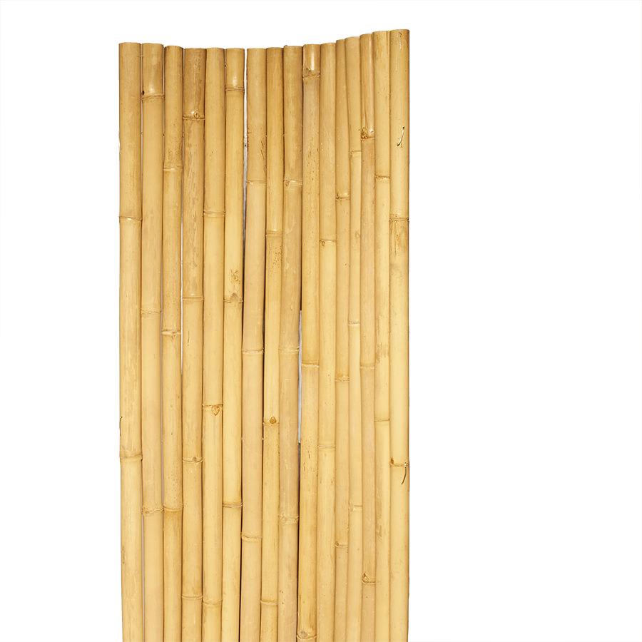 Bambusmatte Apus Stabiler Sichtschutz Am Laufenden Meter