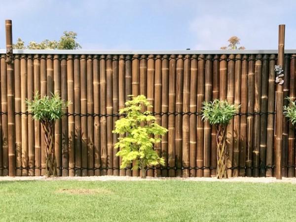 Bambushalbzaun Wulung*