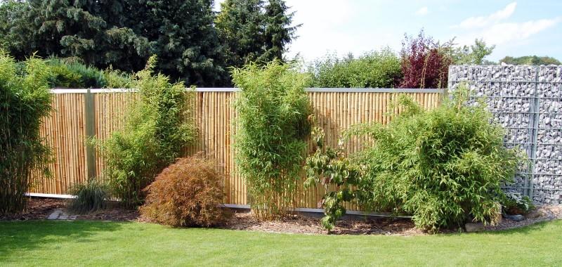 Bambuszaun Mit Edelstahl Oder Cortenstahl Als Sichtschutz Kaufen