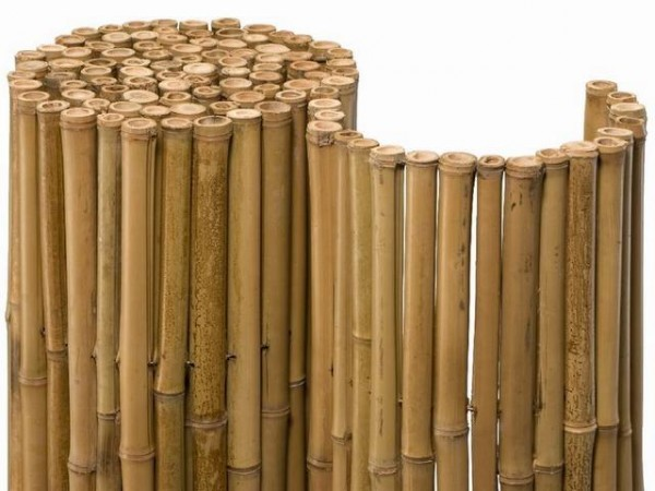 Bambusmatte / Bambusrollzaun hell