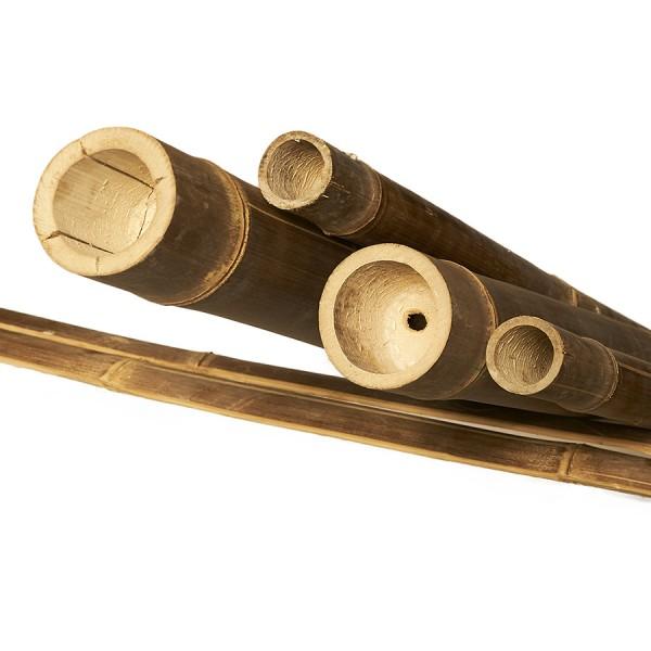 Bambusrohre Wulung*
