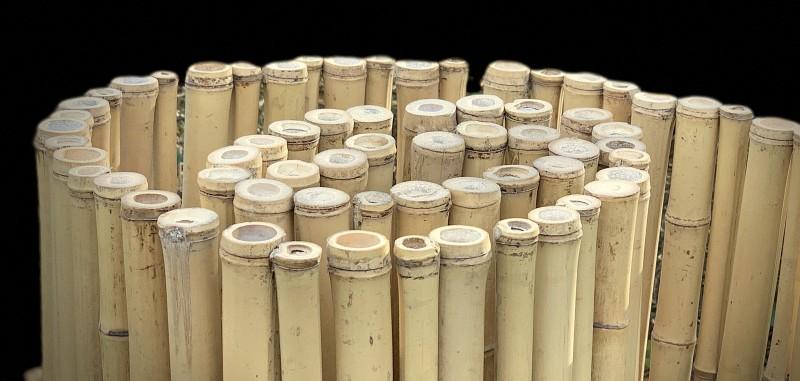 Bambusmatten Perfekter Sichtschutz Im Garten Bambusborse