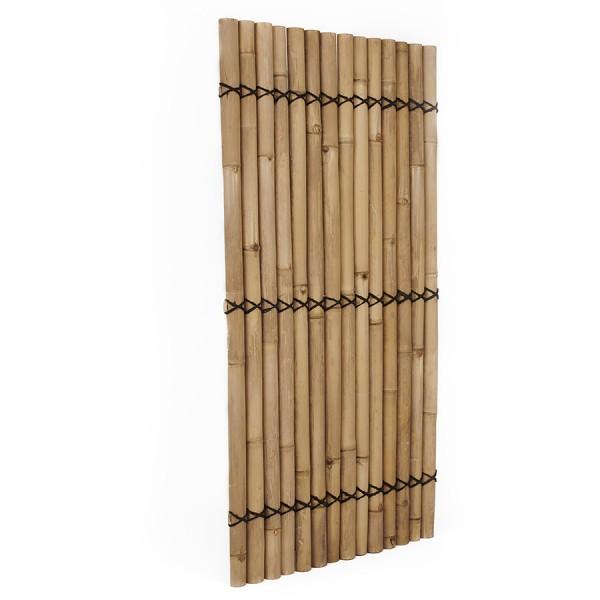 Bambuszaun Apus